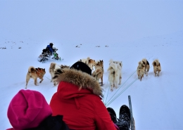 Snowmobile and dogsledding in East Greenland. Photo by Tasiilaq Tours