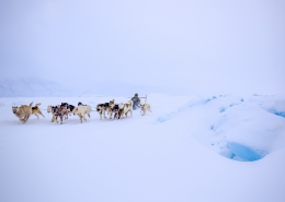 Photo by Greenland Fiord Tours