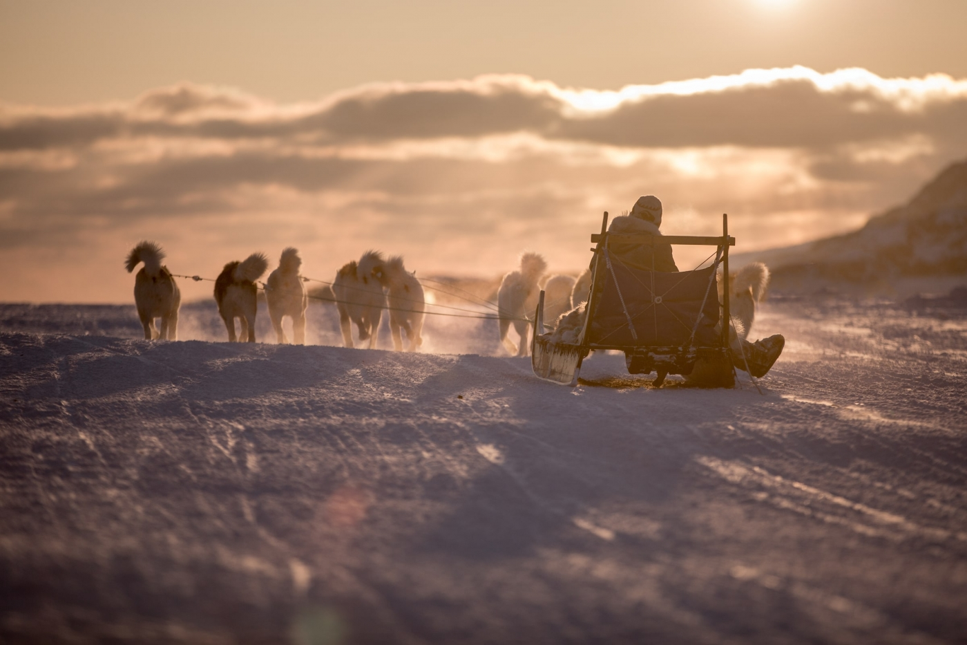 A dog sled heading into the sunset near Sisimiut in Greenland. Photo by Mads Pihl - Visit Greenland