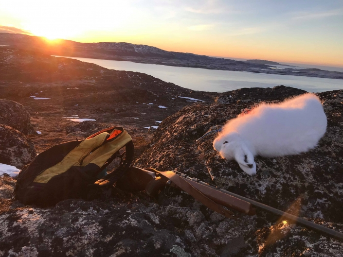 Landscape photo of arctic hare riffle and backpack with sunset. Visit Greenland