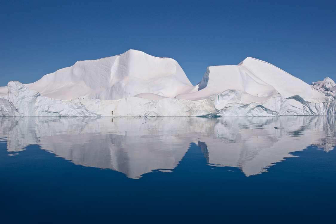 WOG Icebergs