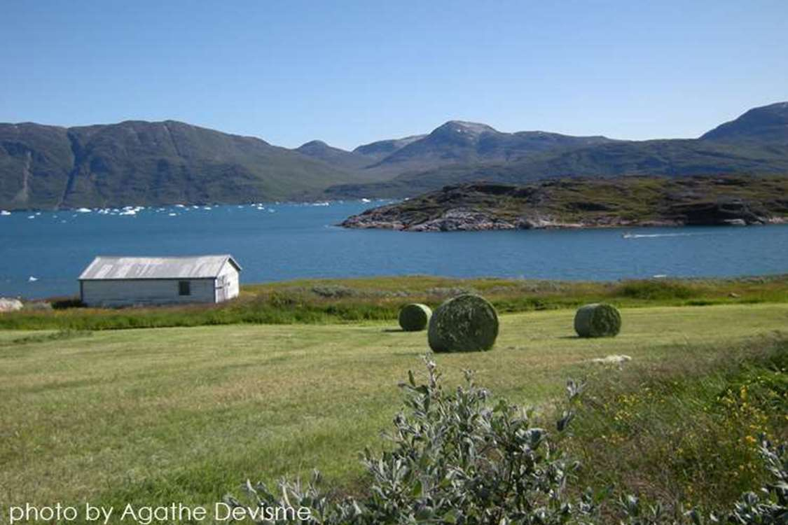 View of Ipiutaq guest farm and the fjord with a boat passing by in summer. Photo by Agathe Devisme