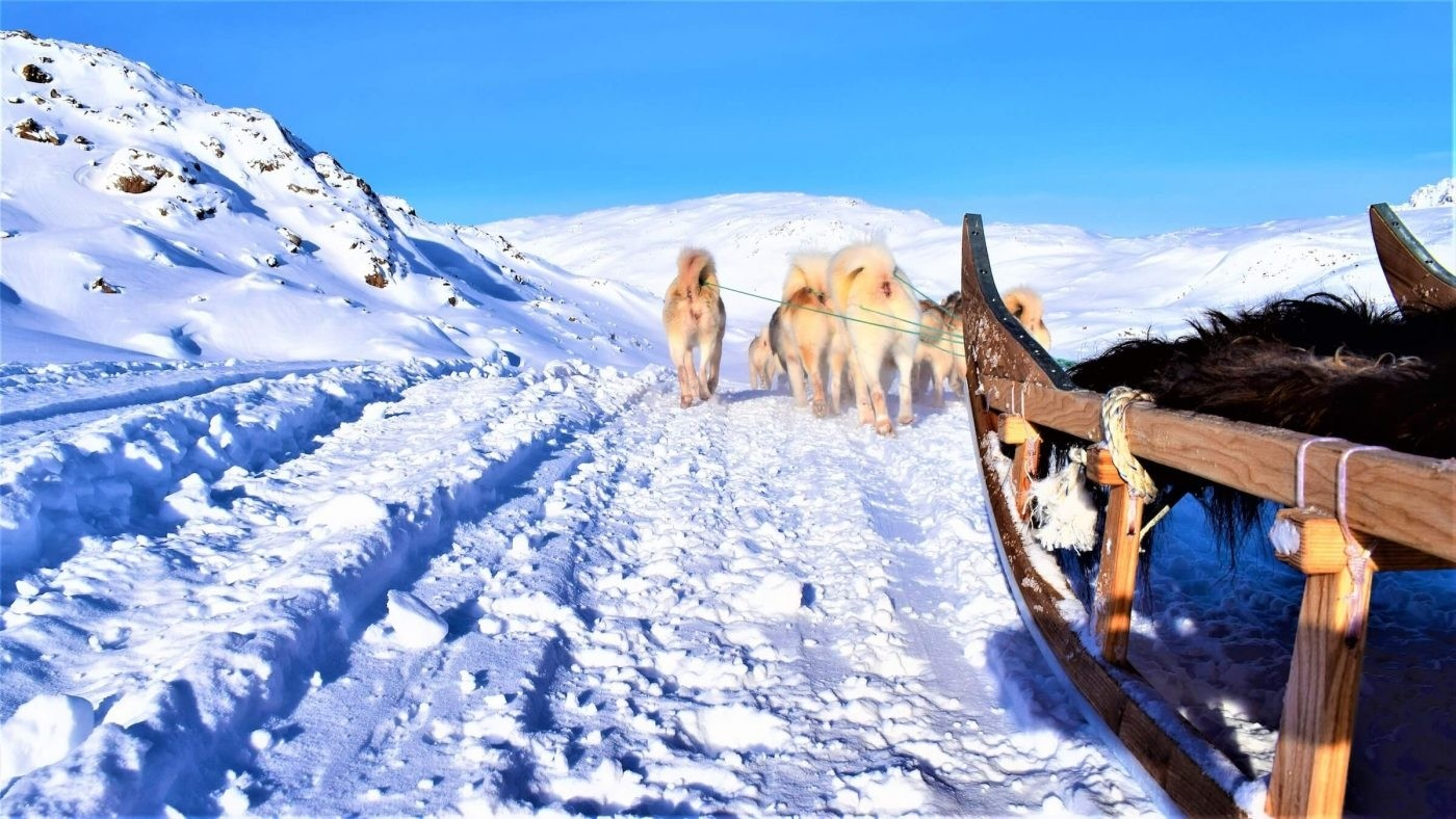 Dogsledding on a sunny day in East Greenland. Photo by Tasiilaq Tours