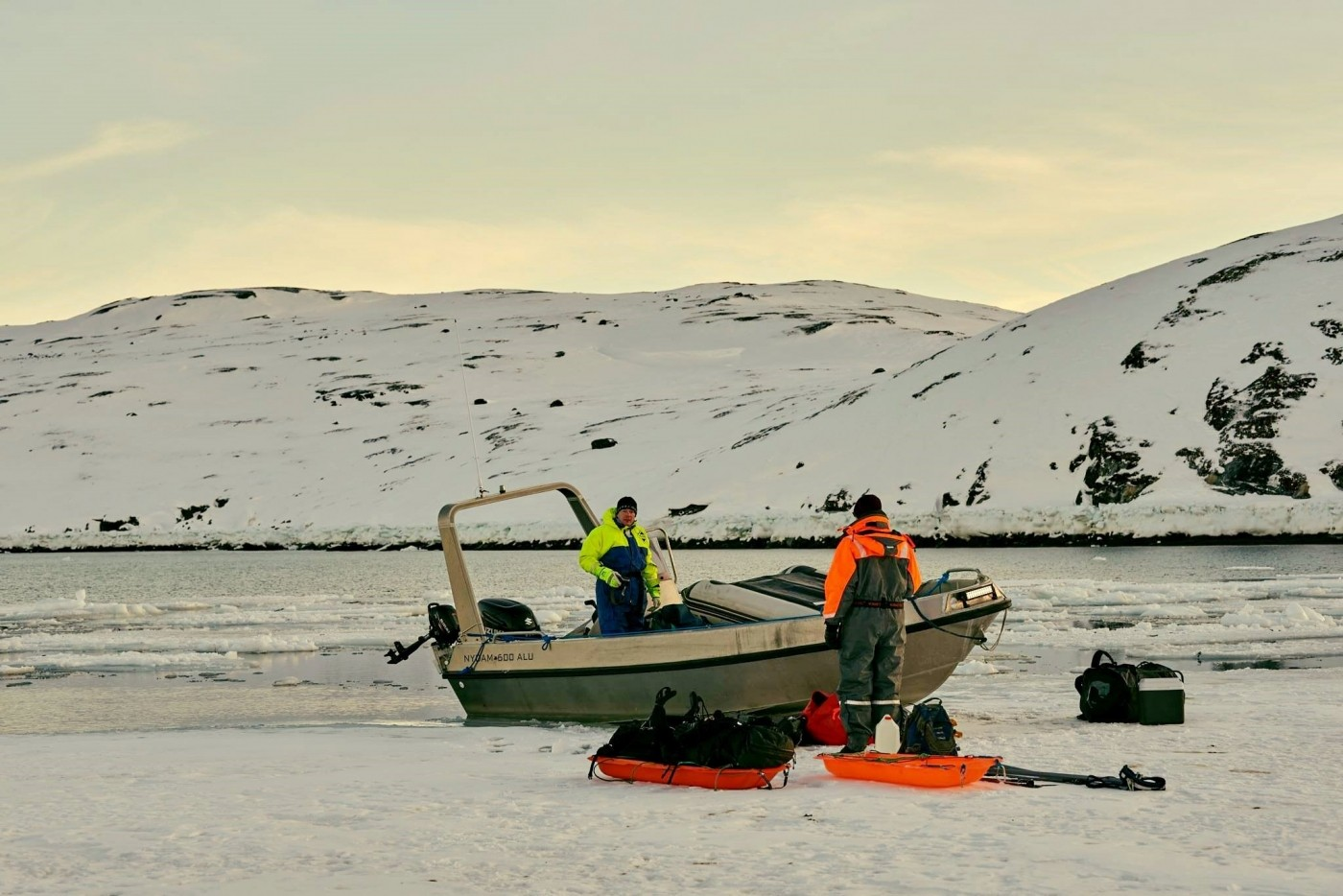 Arctic Mule on the ice. Photo by Nuuk Adventure - Visit Greenland