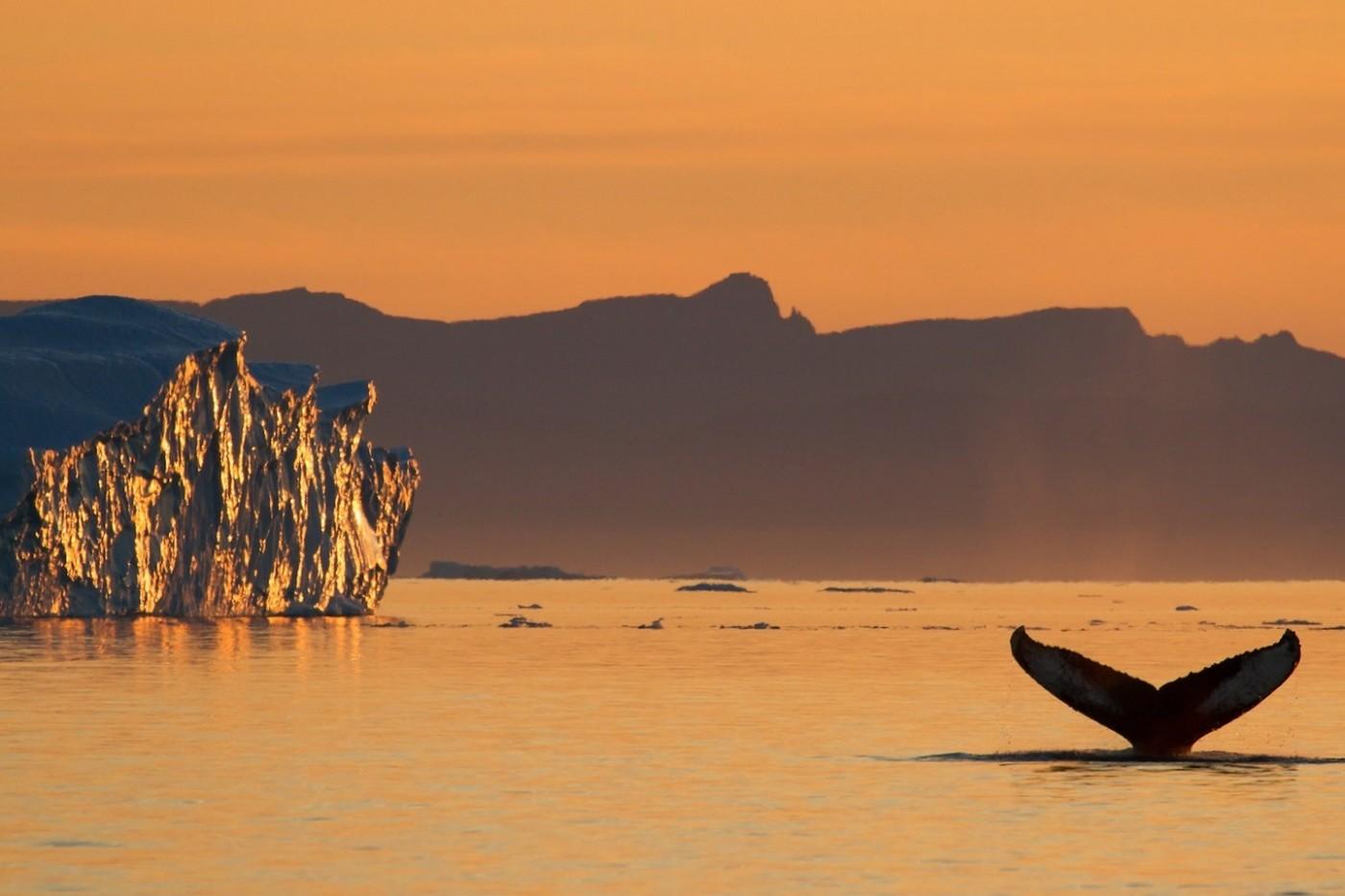 Photo by Julie Skotte - Visit Greenland