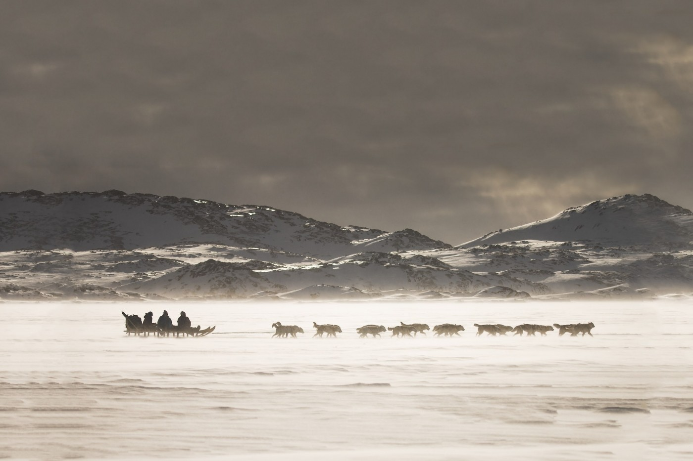 Snow drifting past a dog sled near Tasiilaq in East Greenland. Photo by Mads Pihl - Visit Greenland