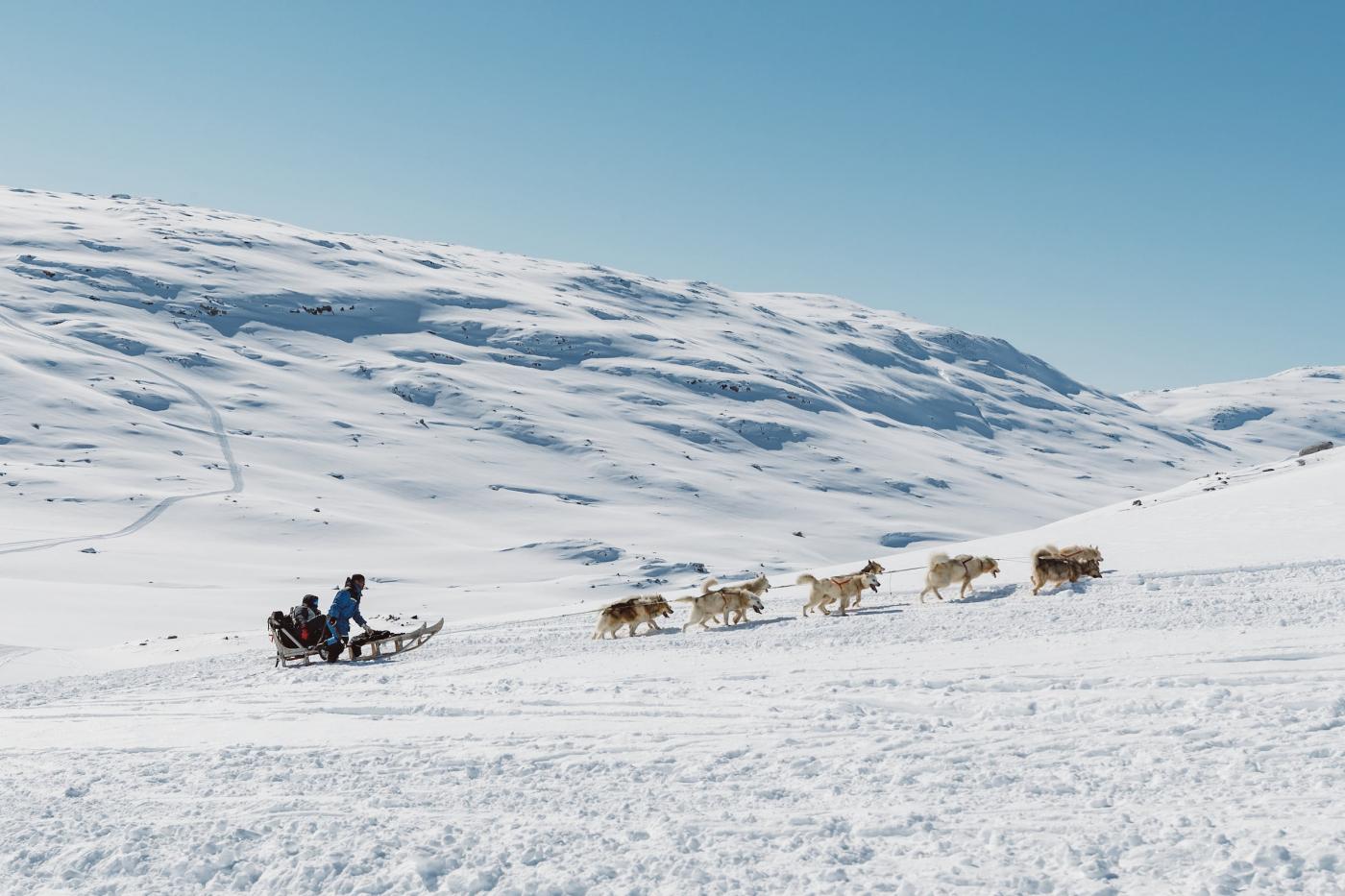 Dog sled on its way to Tasiilaq backcountry. Photo - Nikolaus Brinkmann, Visit Greenland