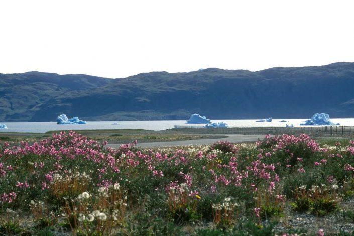 Air Iceland 01