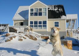 Photo of the Bed & Breakfast from outside. Photo by Bed & Breakfast Paa and Jannik, Visit Greenland