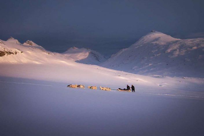 Two people dogsledding near Qeqertarsuaq. Photo by SikuAputVisit Greenland