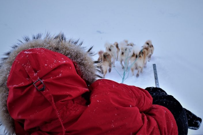Greenland Vacation 04
