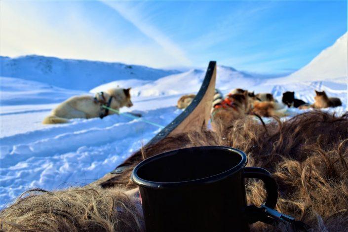 Greenland Vacation 02
