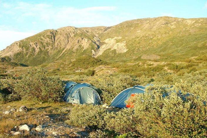 Tents in South Greenland close to Narsarsuaq Hostel. Photo by Blue Ice Explorer