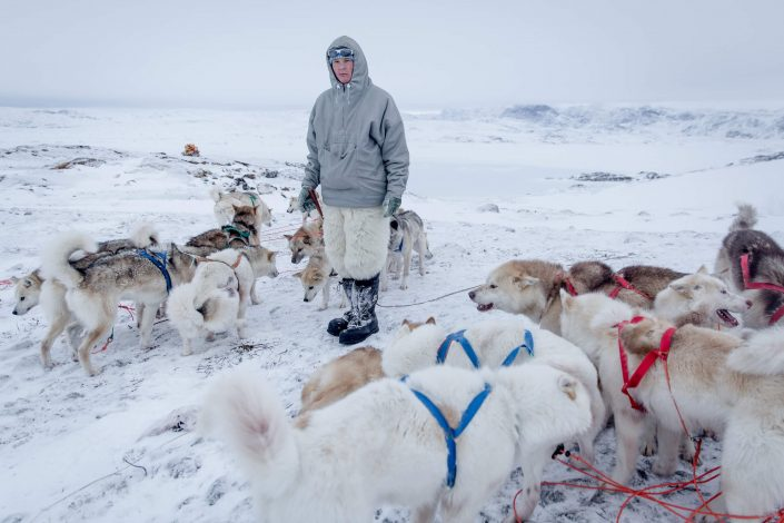 A young musher and his team of sled dogs outside Ilulissat in Greenland. Photo by Mads Pihl - Visit Greenland