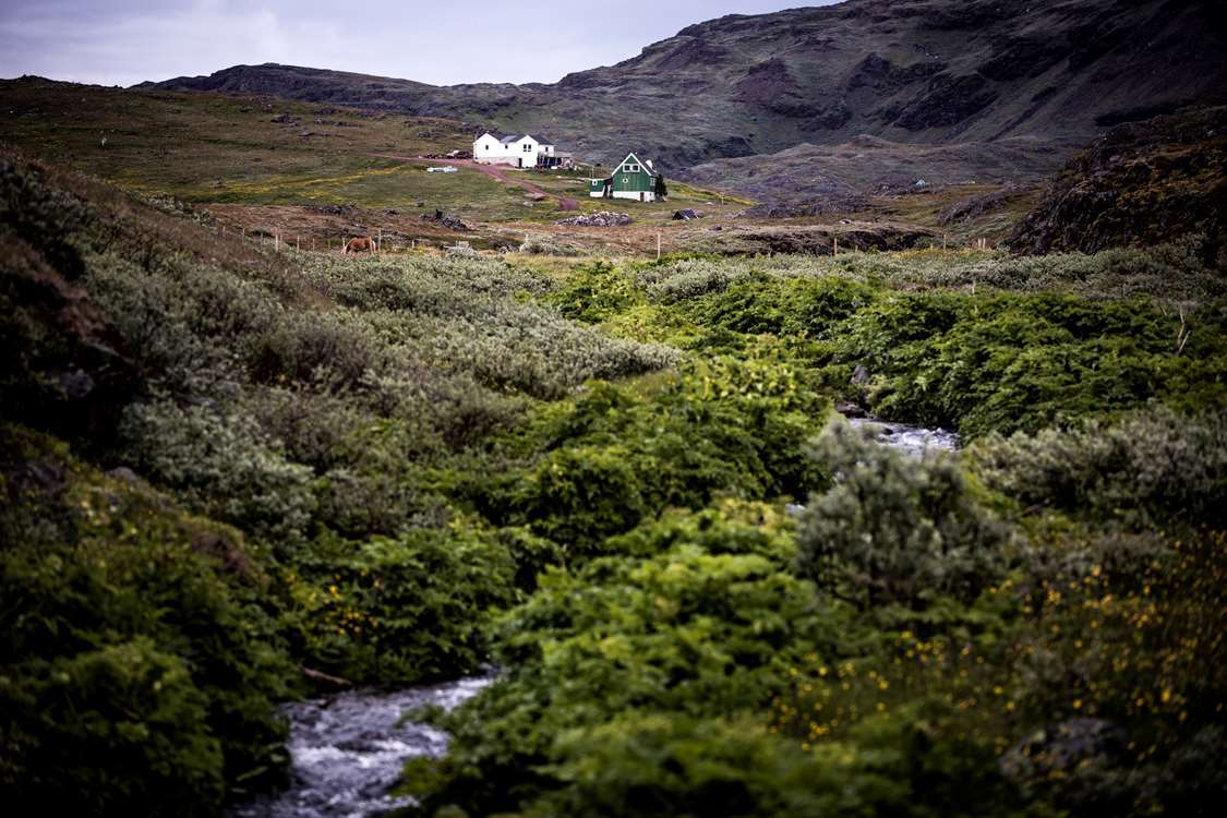 Landscape and local houses near the village of Tasiusaq. Photo by Mads Pihl, Visit Greenland