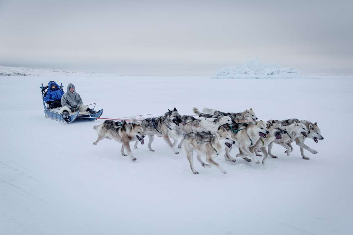 People dog sledding in East Greenland. Visit Greenland